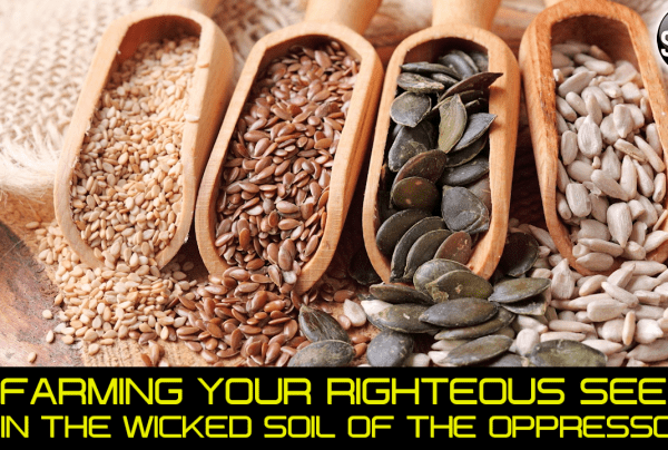 FARMING YOUR RIGHTEOUS SEEDS IN THE WICKED SOIL OF THE OPPRESSOR!