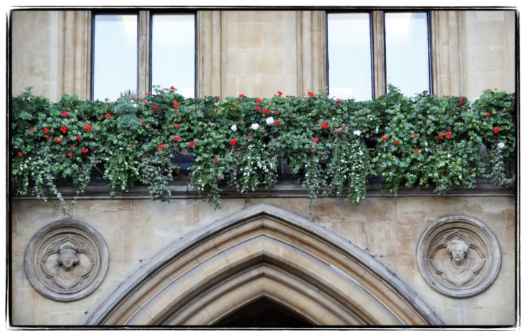 Window box garden over Westminster Abbey - Image (c) Lancia E. Smith - www.lanciaesmith.com