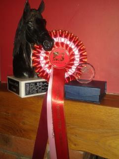 egb awards 2014 009