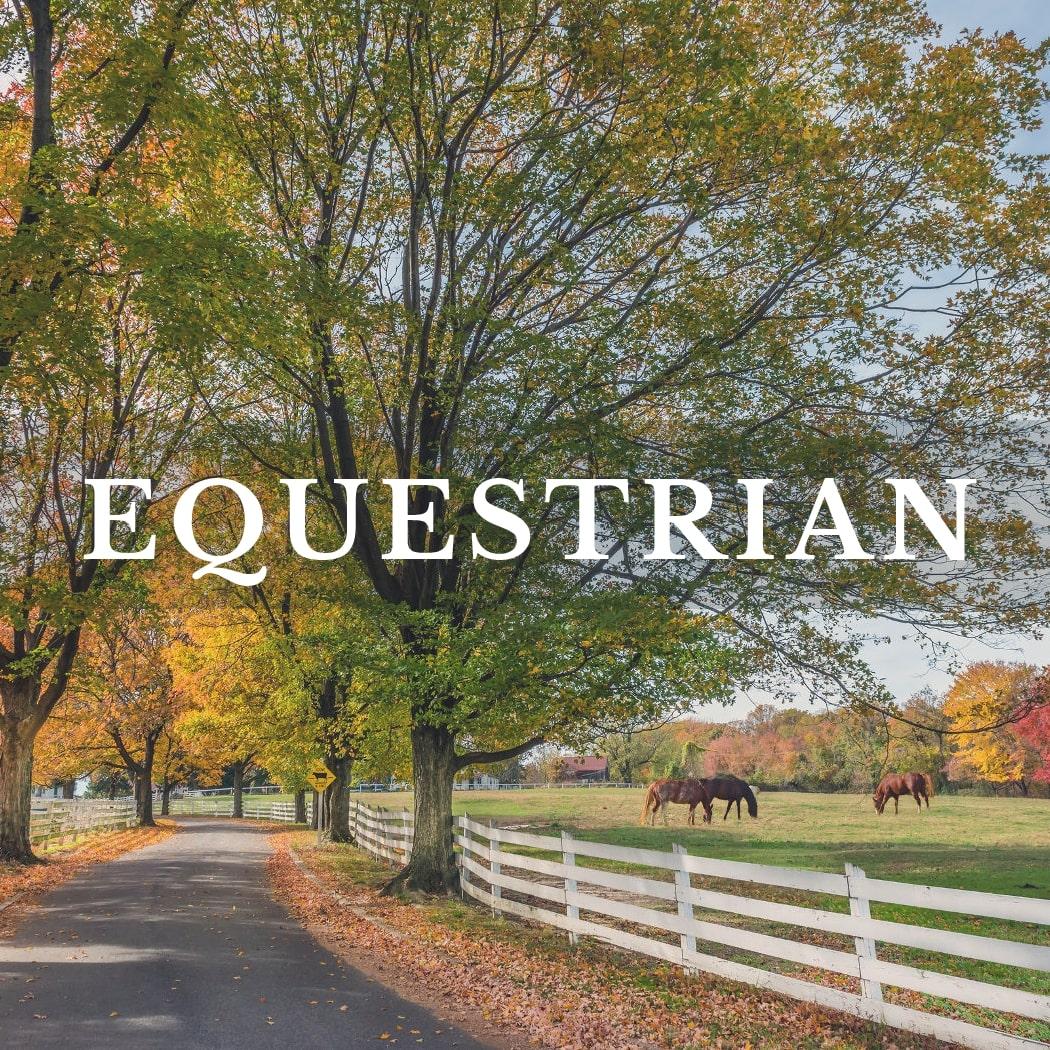 Equestrian Listings