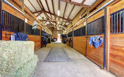 Renters: Before You Lease A Horse Barn