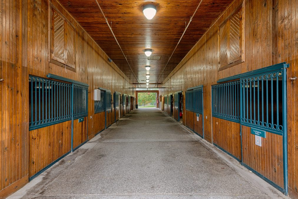 Leasing Out Your Horse Farm – Key Components To Your Lease