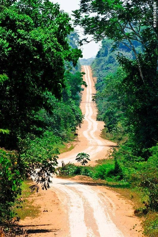 The Amazonian National Park