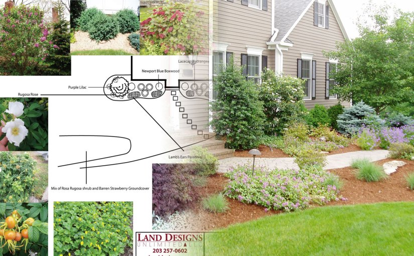 How I Got My Groove – The Stages of a Landscape Design Career