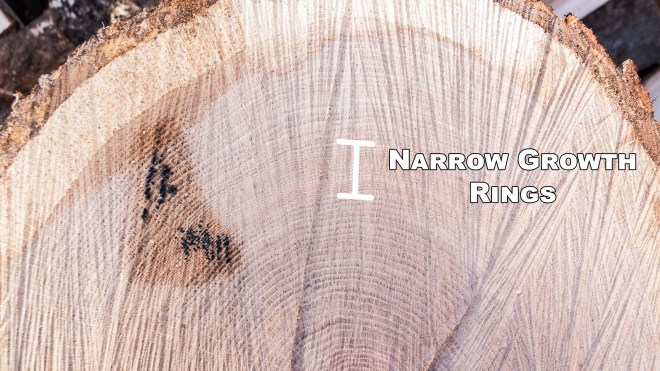 Narrow Growth Rings
