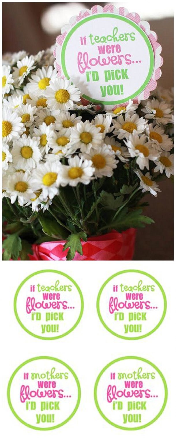 "EASY Last second Teacher Appreciation Week or Mother's Day gift idea! FREE PRINTABLE TAGS ""If Teachers / Mothers were flowers.... I'd pick you!"""