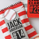 Baseball Goodie Bags Idea