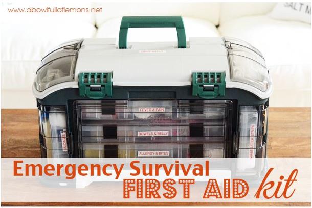 A bowl full of Lemons emergency survival first aid kit