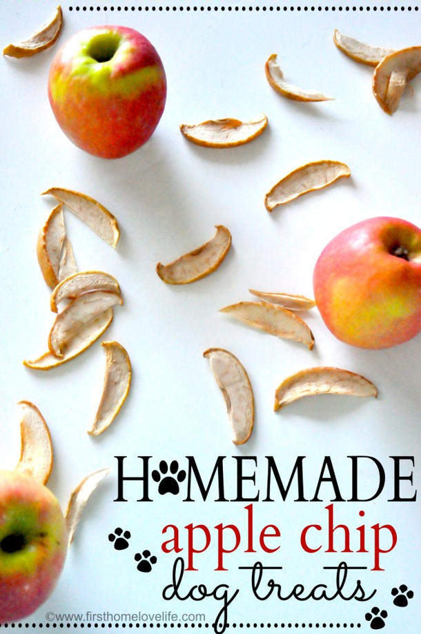 APPLE-chips DOG-TREATS-by first home love life for landeelu dot com roundup