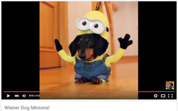 Weiner Dog Minion