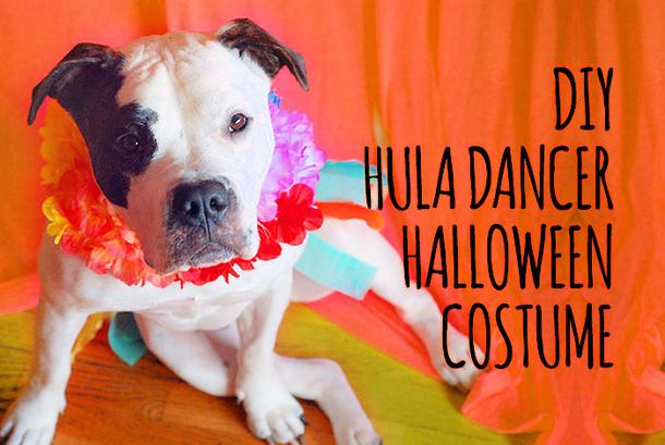 hula-girl-diy-dog-costume-cheap-easy