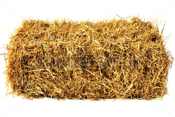 stock-photo-hay-bale-isolated-on-white-122286562