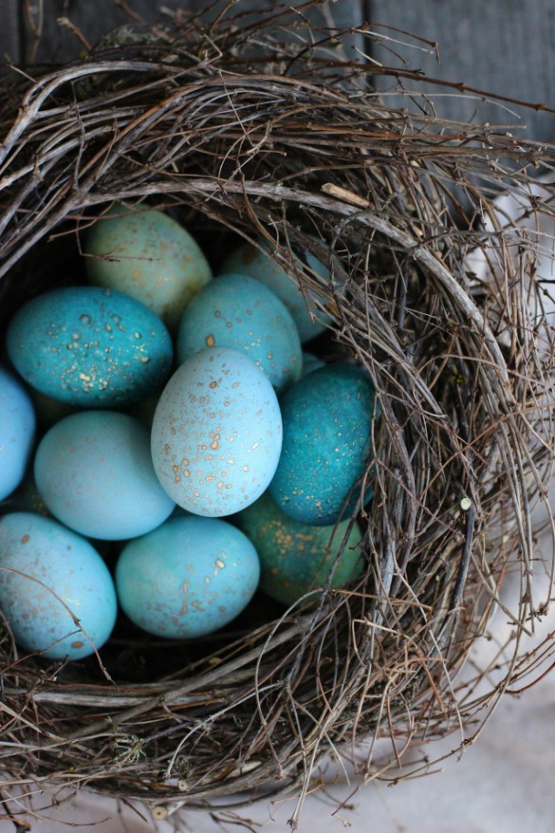diy dyed robin eggs honestly yum