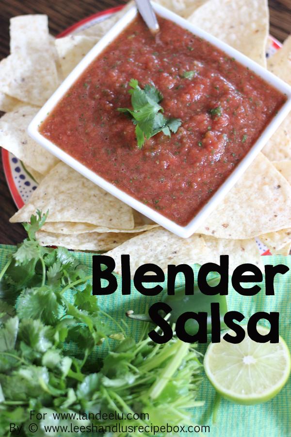 Blender Salsa (1) Landeelu