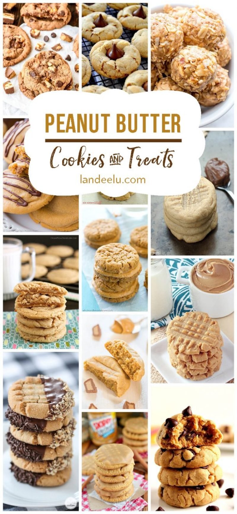 Peanut Butter Cookie Recipe Round Up