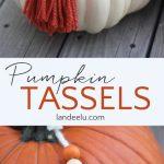 Pumpkin Yarn Tassels