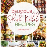 Try these shish kabob recipes on the grill and make your mouth sing! #shishkabobrecipes #grilledskewers #grillrecipes #shishkabob #skewers