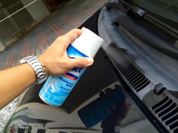 Car Vent Cleaners | Organization Junkie