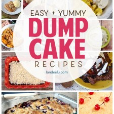 Yummy and Easy Dump Cake Recipes You HAVE to Try!