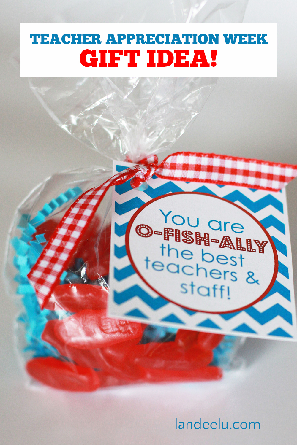 Fun Teacher Appreciation Week gift idea! You are O-FISH-ALLY the best teachers and staff!