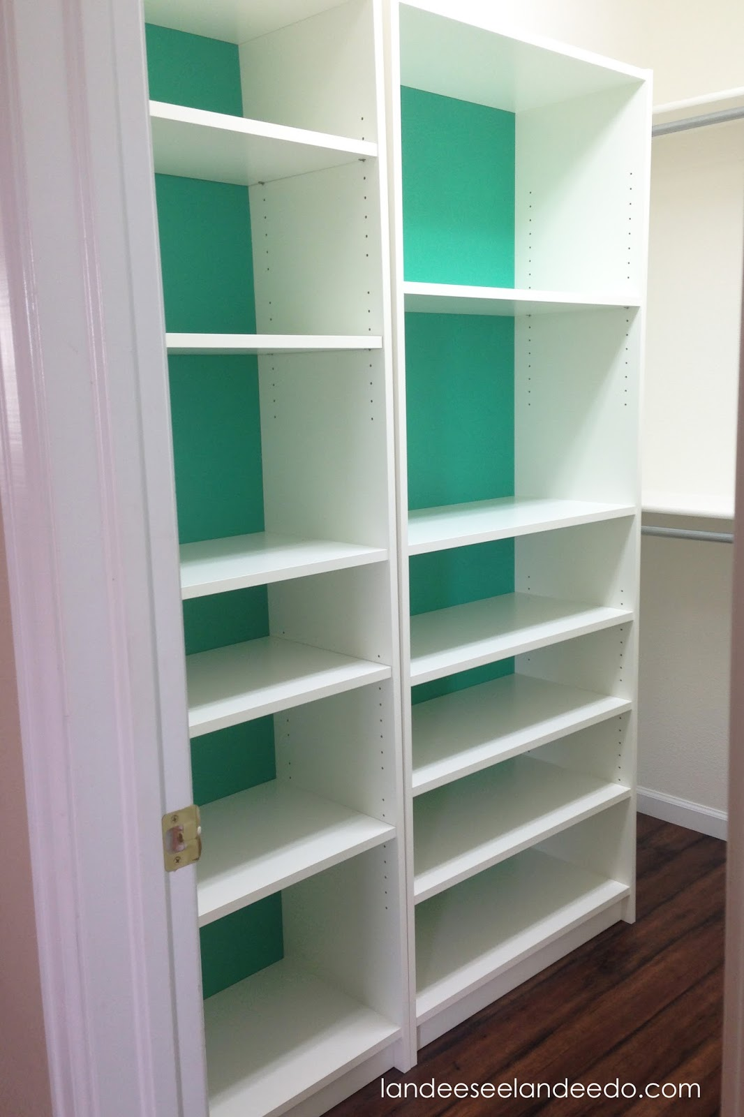 Billy Bookcase Closet