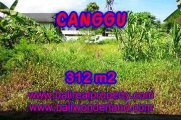 Fantastic Property for sale in Bali, land sale in Canggu Bali – TJCG145