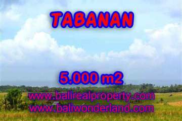 Land for sale in Bali, magnificent view Tabanan Bali – TJTB124