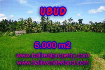 Land for sale in Bali, wonderful view in Ubud Bali – TJUB389