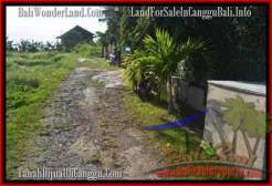 Beautiful PROPERTY CANGGU BALI 1,000 m2 LAND FOR SALE TJCG178