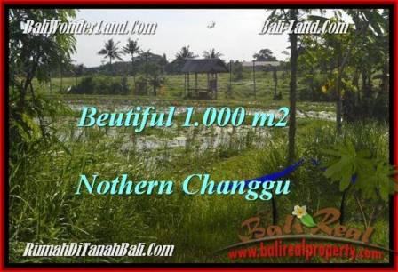 Beautiful 1,000 m2 LAND SALE IN CANGGU TJCG180