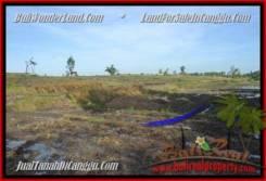 Canggu Pererenan LAND FOR SALE TJCG181