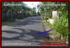 Affordable LAND SALE IN Canggu Pererenan TJCG181