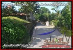Affordable PROPERTY Canggu Pererenan BALI LAND FOR SALE TJCG183