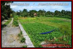 Magnificent LAND FOR SALE IN Canggu Pererenan BALI TJCG184