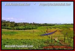 Beautiful LAND IN Canggu Pererenan BALI FOR SALE TJCG184