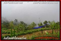 Magnificent 12,700 m2 LAND SALE IN TABANAN BALI TJTB167