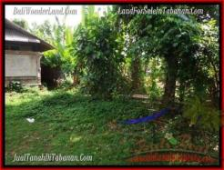 FOR SALE Beautiful PROPERTY LAND IN TABANAN TJTB202