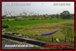 FOR SALE Exotic LAND IN Canggu Brawa TJCG185
