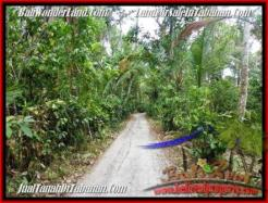 Magnificent LAND FOR SALE IN TABANAN TJTB161