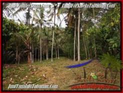 Exotic TABANAN BALI 3,600 m2 LAND FOR SALE TJTB211