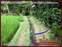 Exotic TABANAN BALI 9,500 m2 LAND FOR SALE TJTB210