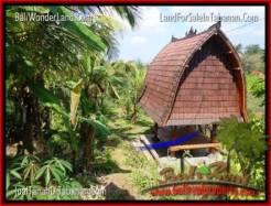 Affordable LAND SALE IN Tabanan Selemadeg BALI TJTB205