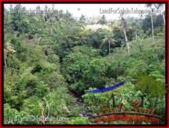 Beautiful LAND FOR SALE IN TABANAN TJTB205