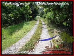 Tabanan Selemadeg BALI LAND FOR SALE TJTB206