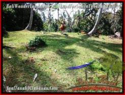 Affordable PROPERTY LAND IN TABANAN FOR SALE TJTB207