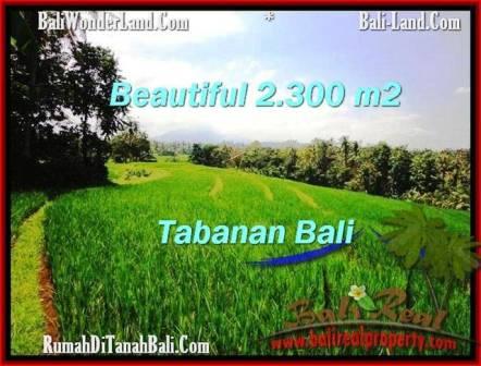 Beautiful LAND FOR SALE IN TABANAN TJTB209
