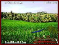 FOR SALE Beautiful PROPERTY LAND IN TABANAN TJTB209