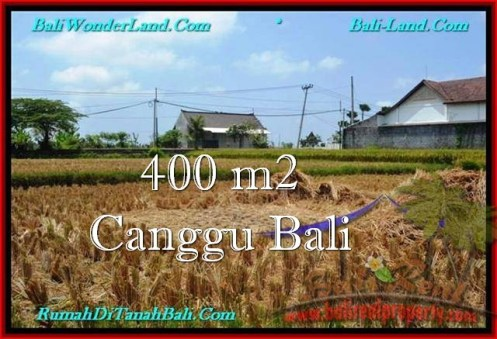 Magnificent LAND FOR SALE IN Canggu Pererenan BALI TJCG188