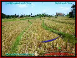 Exotic LAND FOR SALE IN Canggu Pererenan BALI TJCG197