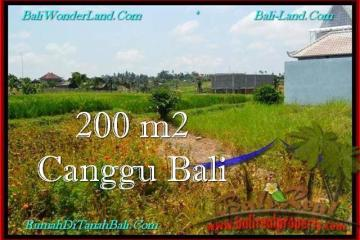 FOR SALE Exotic PROPERTY LAND IN Canggu Pererenan BALI TJCG191